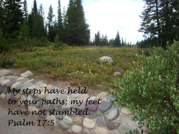 Psalm 17 5