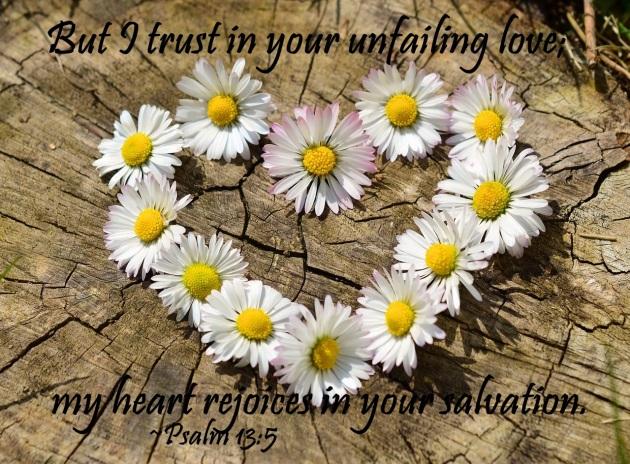 daisy-712892_1280 CC0 Psalm 13_5